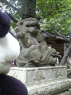 五條天神の狛犬さんII
