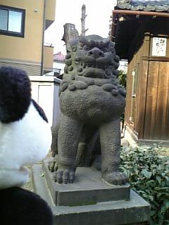 駒千日記:満足稲荷の狛犬さんI