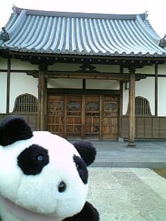 駒千日記:新しくて古い光源寺