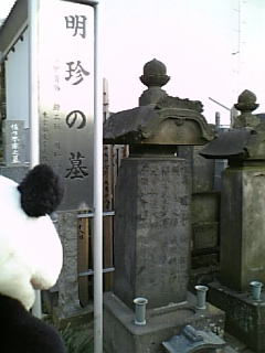 駒千日記:明珍さんのお墓
