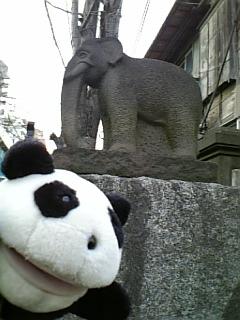 駒千日記:瑞泰寺の象さんII