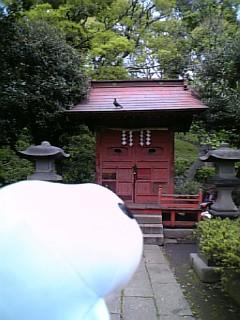須藤公園のお社