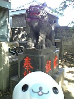 諏方神社の狛犬さんIV