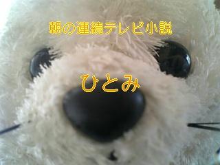 連続テレビ小説・ひとみ