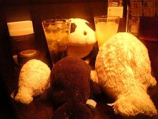 ウオッカちゃん年度代表馬記念!