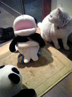 犠牲熊猫と真犯猫