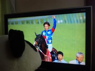 おめでとう!モダン&<br />  後藤騎手