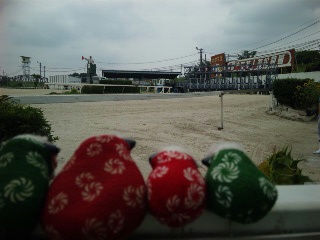 笠松のガシャコン