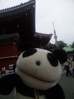 三社祭日記2013<br />  ・浅草人気の理由