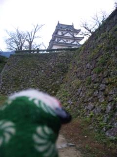シシオの気になる宇和島城の石垣