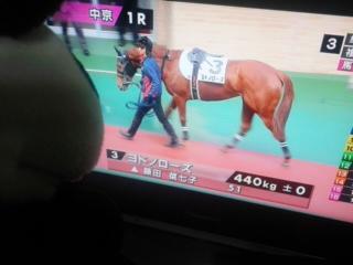 今日はテレビで中京観戦