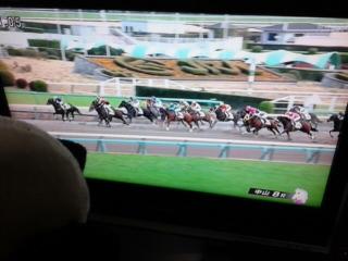 中山8レース