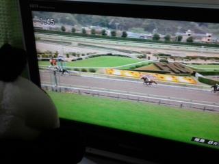 福島8レース