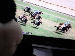今日の菜七子騎手・新潟5<br />  レース