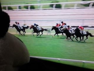 京都3レース