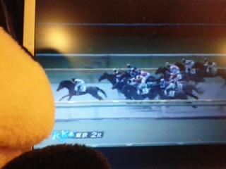 今日の菜七子騎手・東京2<br />  レース