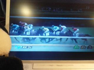 東京3レース