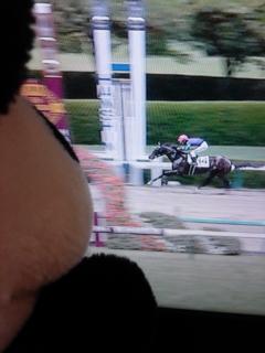 阪神5レースで14番勝つ