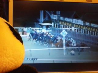 東京1レース・とうちん戒告