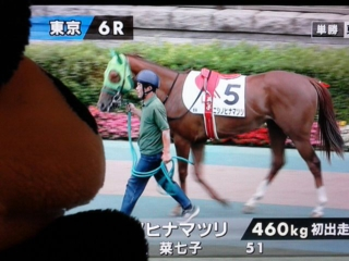 東京6レース・惜しいっ!!
