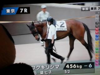 東京7レース・プラス22<br />  マイナス6