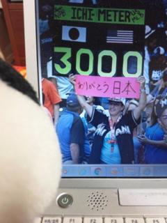 コタ的オリンピックハイライト・エイミーさん、ようやく開幕?