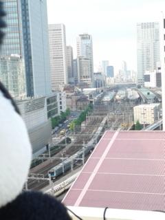 東京駅特別