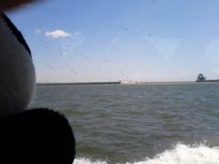 海のフェンス