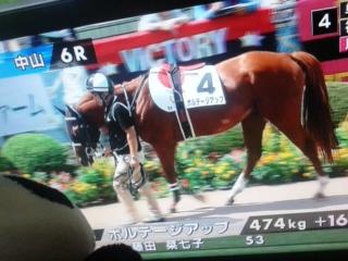 今日の藤田菜七子騎手、今日の一鞍