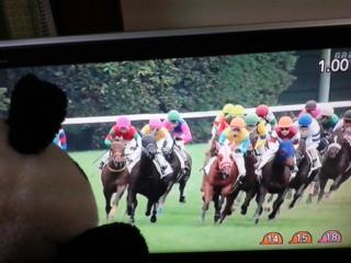 東京5レース、2度目の直接対決