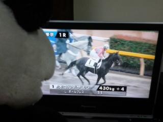 リサ騎手vs<br />  菜七子騎手第3ラウンド