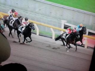 リサ騎手、最終レースは6着