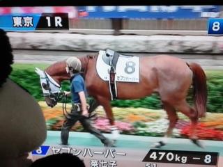 今日の藤田菜七子騎手