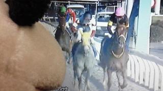 コタ応援馬初の快挙
