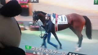 今日の藤田菜七子騎手、順番通りに歩けない