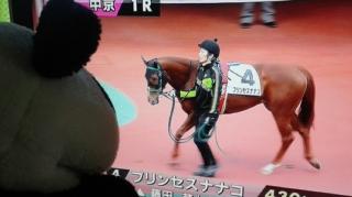 今日の藤田菜七子騎手、久々プリンセスナナコ