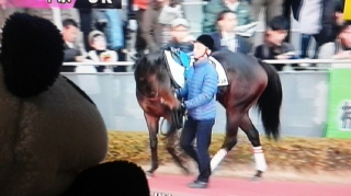 この馬にしてはぁ?