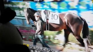 今年の藤田菜七子騎手