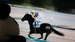 待ってましたっ!藤田菜七子騎手