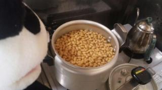 大豆が煮えた