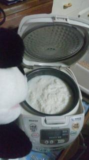チャコの甘酒作り:炊飯器にセットする