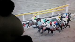 藤田菜七子騎手を囲む会、二次会
