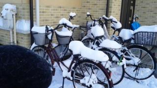 自転車にラブ