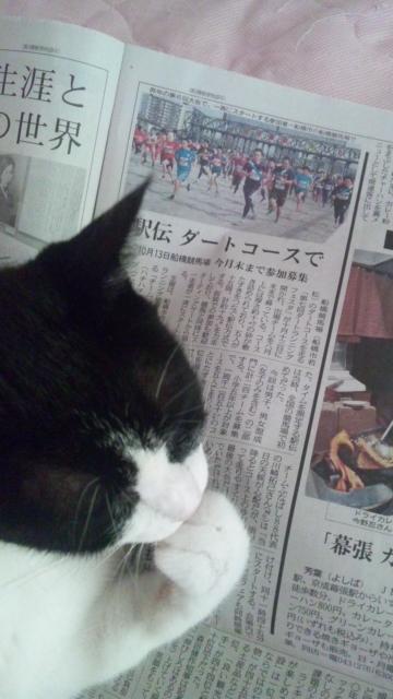 タッタの新聞チェック・ダート駅伝