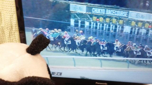 中京2レース