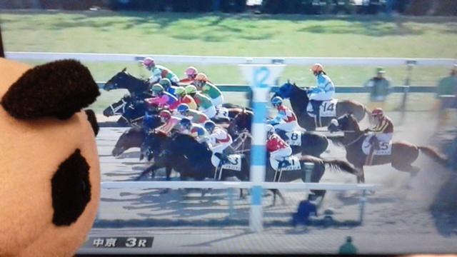 中京3レース