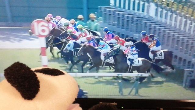 中京7レース