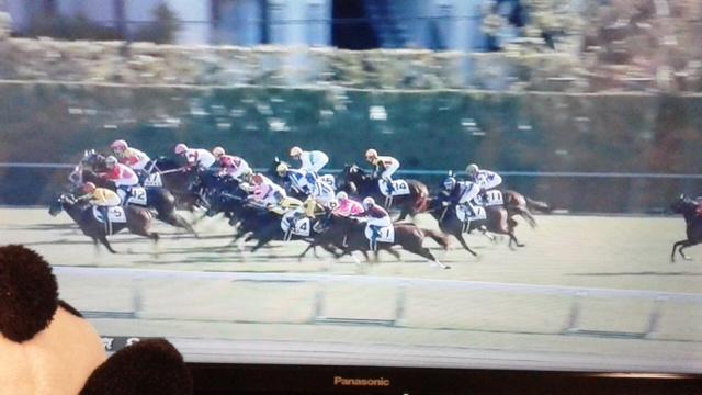 中京8レース