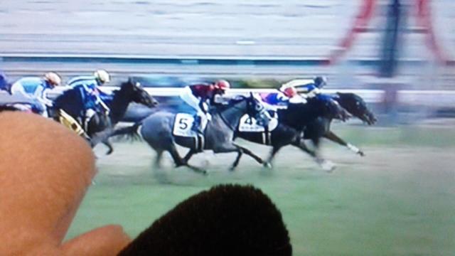 中京9レース