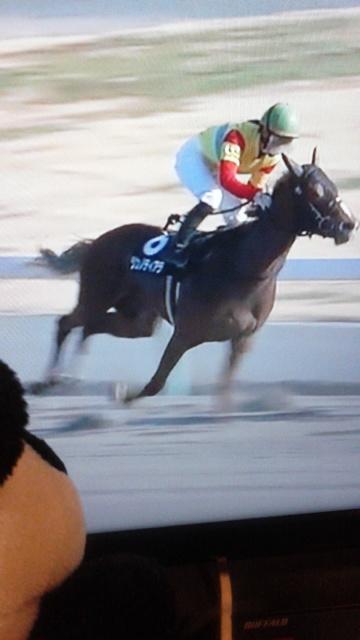 中京10レース